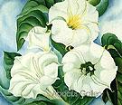 Jimson Weed 1936 - Georgia O'Keeffe