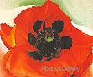 Poppy 1927 - Georgia O'Keeffe