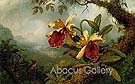 Orchids and Hummingbird c1875 - Martin Johnson Heade