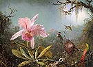 Cattelya Orchid and Three Brazilian Hummingbirds - Martin Johnson Heade