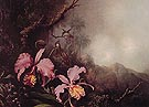 Two Orchid in a Mountain Landscape - Martin Johnson Heade