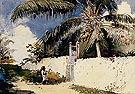 Garden Nassau - Winslow Homer