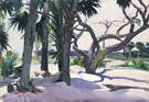 Folly Beach 1929 - Edward Hopper