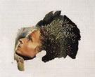 Automatic Beginning of a Portrait of Gala 1932 - Salvador Dali