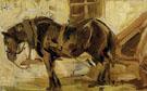 Small Horse Study 1905 - Franz Marc