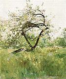 Peach Blossoms Villiers le Bel 1887 - Childe Hassam