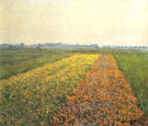 The Gennevilliers Plain Yellow Filelds 1884 - Gustave Caillebotte