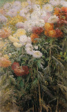 Clump of Chrysanthemums Garden at Petit Gennevilliers 1893 - Gustave Caillebotte