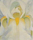 Untitled White Iris 1926 - Georgia O'Keeffe