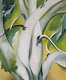 White Birch Lake George 1925 - Georgia O'Keeffe