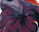 Purple Petunias 1927 - Georgia O'Keeffe