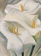 Calla Lilies 1924 459 - Georgia O'Keeffe