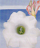 Bella Donna with Pink Torch Ginger Bud 1939 - Georgia O'Keeffe