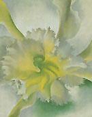 An Orchid 1941 - Georgia O'Keeffe