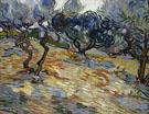 Olive Trees 1899 - Vincent van Gogh
