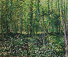 Trees and Undergrowth Summer 1887 - Vincent van Gogh