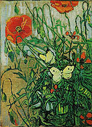Butterflies and Poppies May 1890 - Vincent van Gogh