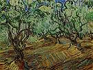 Olive Grove 1889 - Vincent van Gogh
