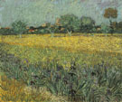 Field with Flowers near Arles 1888 - Vincent van Gogh