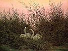 Swans in the Reeds - Caspar David Friedrich