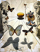 Allegorie de Soie 1950 - Salvador Dali