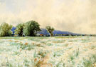 The Daisy Field - Alfred T Bricher