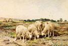 Grazing Sheep - Anton Mauve
