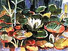 Waterlilies - Karl Schmidt Rottluff