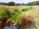 Marshland - Dennis Miller Bunker