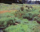 The Brook At Medfield 1889 - Dennis Miller Bunker