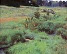 The Brook At Medfield 1889 - Dennis Miller Bunker