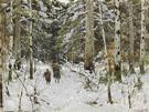 Gathering Branches in Winter - Konstantin Yakovlevich Kryzhitsky