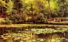 Waterlilies 1920 - Peder Mork Monstead