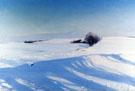 A Winter Morning 1895 - Sigvard Marius Hansen