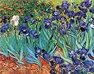 Irises in Garden St Remy - Vincent van Gogh